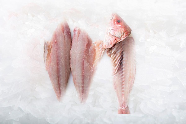Fresh fish and fillets